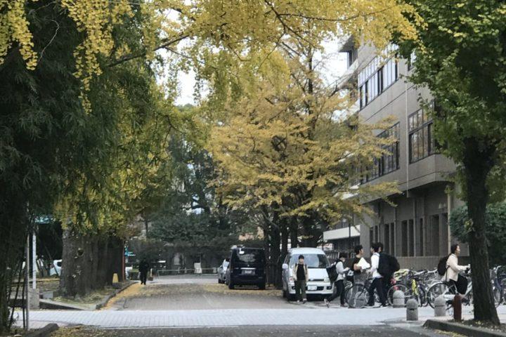 保健師募集【鹿児島市 会計年度任用職員】